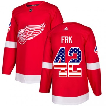 Authentic Adidas Youth Martin Frk Detroit Red Wings USA Flag Fashion Jersey - Red